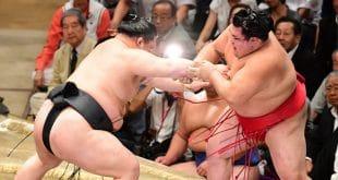 Goeido contre Onosho