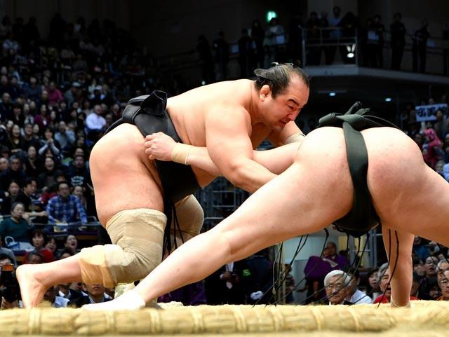 Aminishiki est arrivé in extremis à une majorité de victoires lui assurant de rester en division makuuchi en janvier prochain
