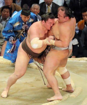 Hakuho poursuit sa domination