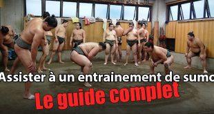 entrainement sumo guide