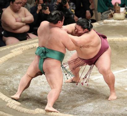 Kakuryu et Mitakeumi restent en tête