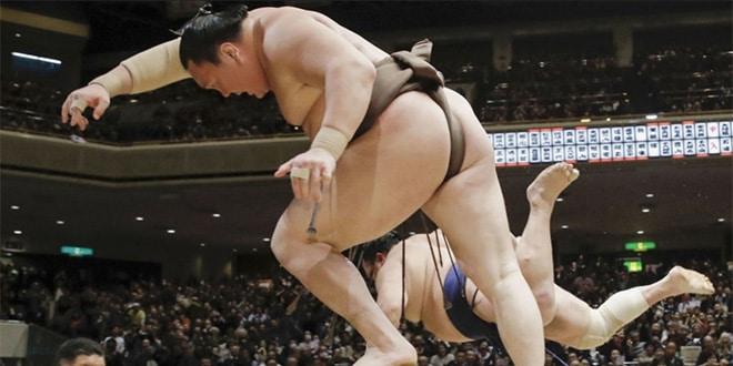 J4 – Hakuho reste invaincu, Kakuryu se ressaisit