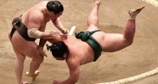 Hakuho contre Nishigiki