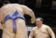 J14 – Les sekiwake à la lutte pour le titre !