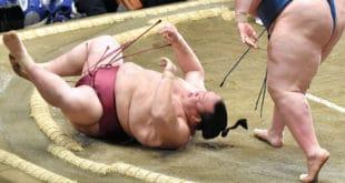 Kisenosato contre Ichinojo