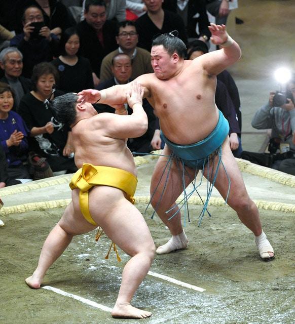 Tamawashi contre Endo