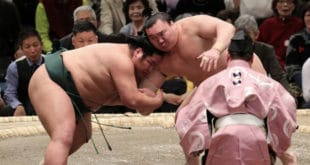 Hakuho contre Nishikigi