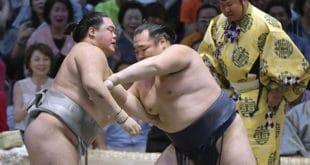Kakuryu contre Meisei