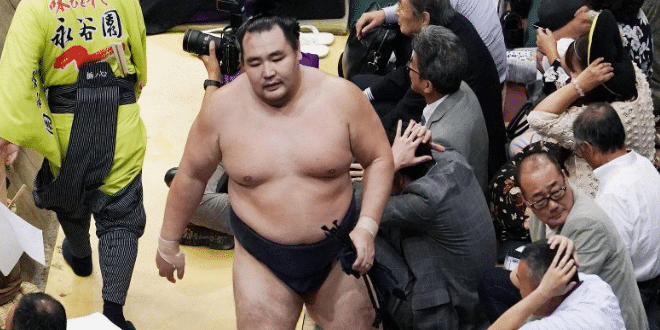 J8 – Okinoumi persévère, Kakuryu blessé