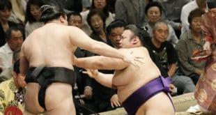 Takakeisho contre Ryuden