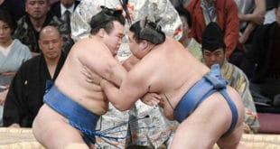Kotoshogiku contre Shodai une
