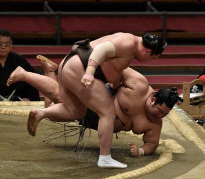 Hakuho contre Tokushoryu