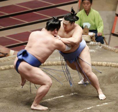 Shodai contre Wakatakakage