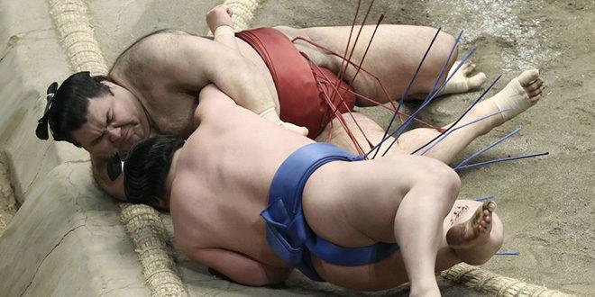 Takayasu contre Wakatakakage