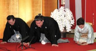 Terunofuji promotion