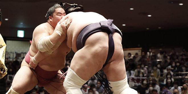 J8 – Terunofuji conserve la tête du tournoi