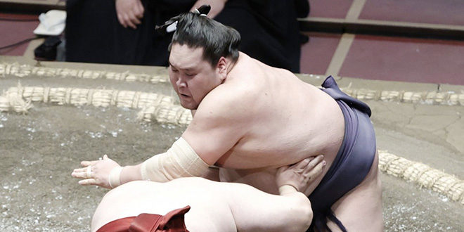 J7 – Terunofuji termine une semaine parfaite