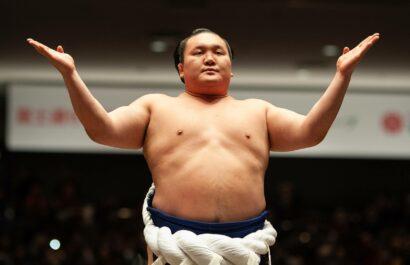 L'héritage de Hakuhô comprend 45 Coupes de l'Empereur et 1187 victoires en carrière.