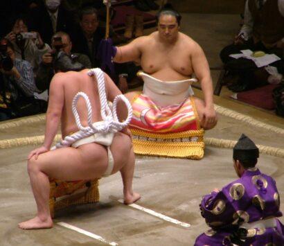 Vue sur le nœud Shiranui à double ganse de la tsuna de yokozuna d'Hakuhô